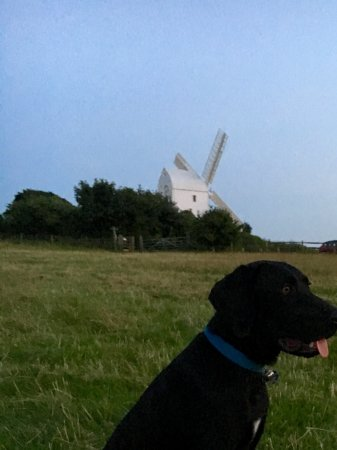 Hassocks, UK: Jack and Jill Windmills