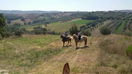 Mosciano Sant'Angelo, Italia: Passeggiate e Relax....