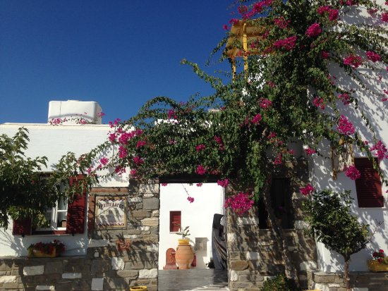 Naoussa, Grækenland: photo5.jpg