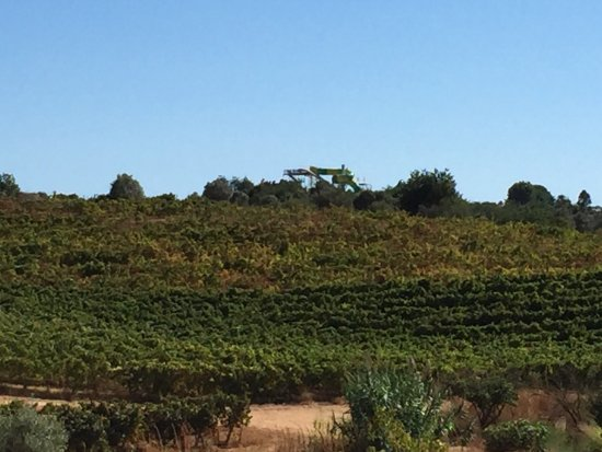 Estombar, Portugal: photo2.jpg