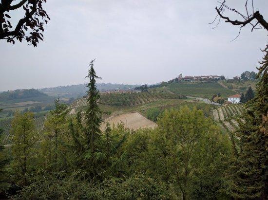 Montegrosso d'Asti, Italie : IMG_20160923_094818_large.jpg