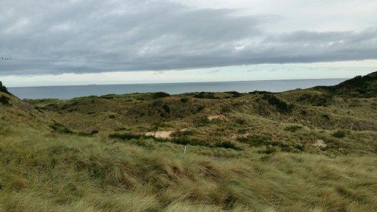 Lost Farm Barnbougle Golf Course: 20160920_075351_large.jpg