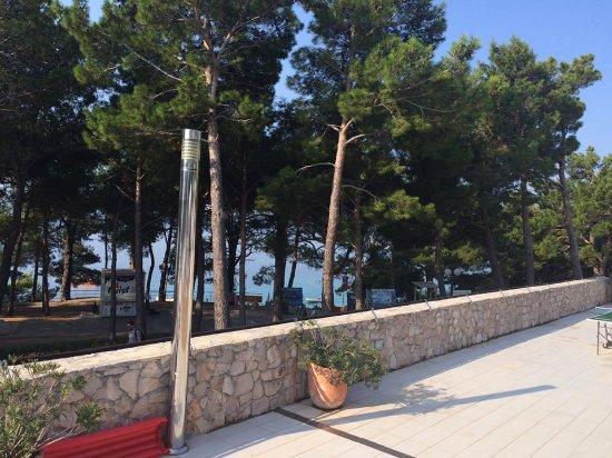 Bluesun Hotel Elaphusa: terrace pool