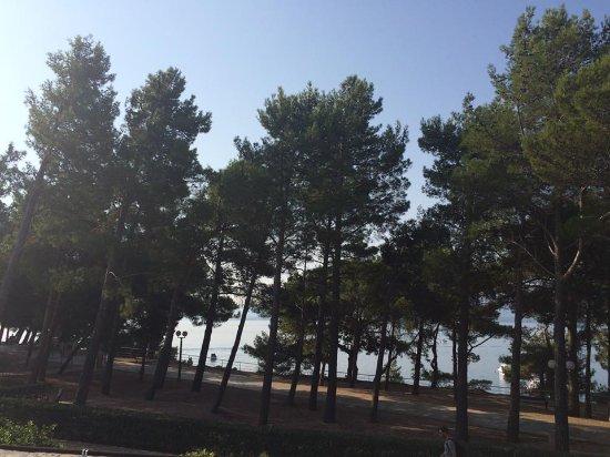 Bluesun Hotel Elaphusa: Garden sea view