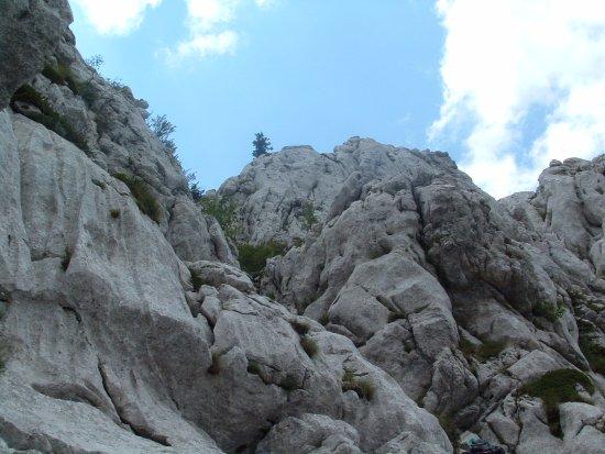 Gospic, Хорватия: Beautiful