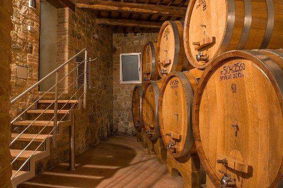 Montalcino, Italia: Wine Cellar