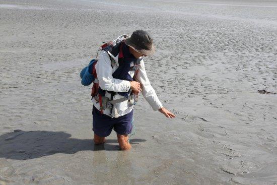 Ardevon, Fransa: Les sables mouvants
