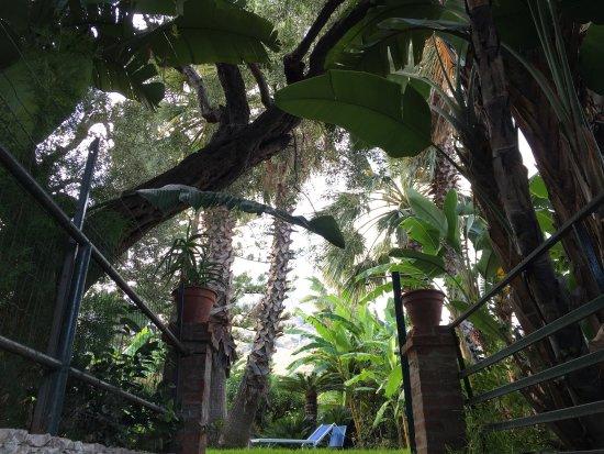 Hotel Baia delle Sirene : photo3.jpg