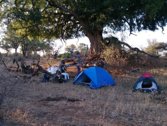 Marloth Park, África do Sul: Backpacking in Kruger