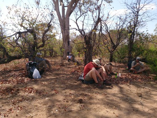 Marloth Park, África do Sul: Backpacking in Kruger2