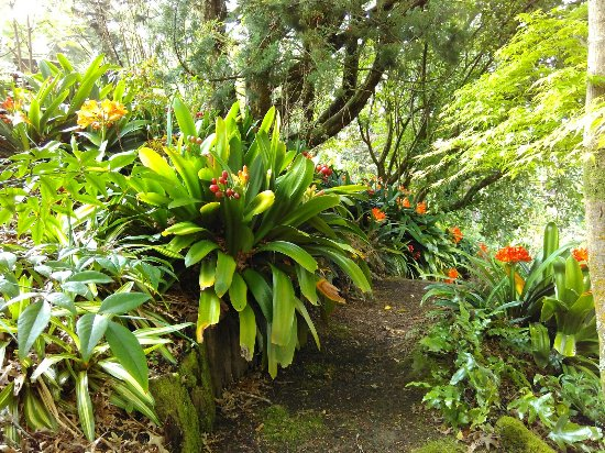 Manukau, Νέα Ζηλανδία: IMG_20160923_145310_large.jpg