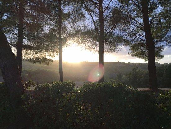 Terricciola صورة فوتوغرافية