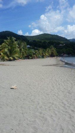 Bouillante, Guadeloupe: 20160919_133736_large.jpg