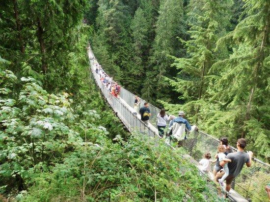 North Vancouver, Canadá: Capilano Suspension Bridge