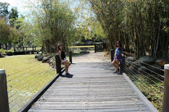 Benowa, ออสเตรเลีย: Gold Coast Regional Botanic Gardens