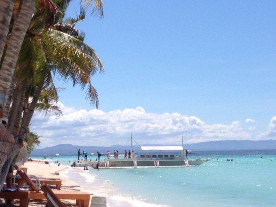 bohol beach club picture of bohol beach club panglao island rh tripadvisor com