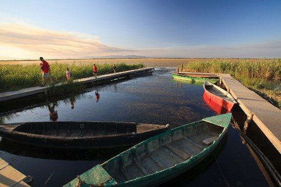 Catalogne, Espagne : Terres de l'Ebre - Ponton d'embarquement à la llacuna del Garxal -Photo par Mariano Cebolla