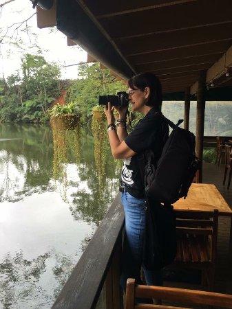 Colo I Suva Rainforest Eco Resort: photo0.jpg