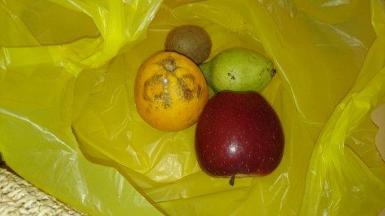 Elounda Residence: Fruits pour 2, à l'accueil de 22h00 en guise de pot d'arrivée.