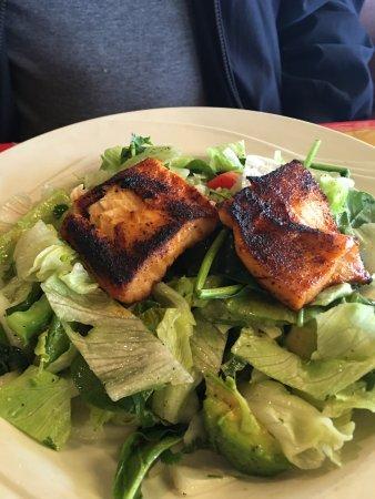 Sebring, FL: Salmon Salad a big appetizer
