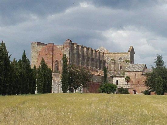 Chiusdino, Italia: 20160602_172419_large.jpg
