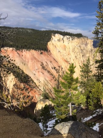 Trout Lake Hike  Picture Of Yellowstone Luxury Tours Day Tours Montana  T