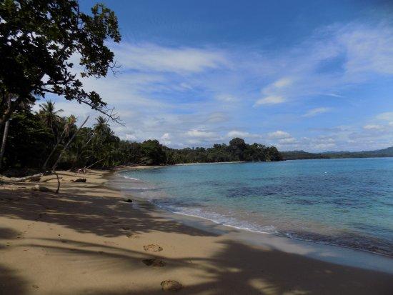 Playa Punta uva, arrecife.