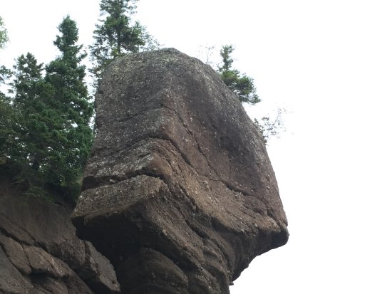 Hopewell Cape, Canada: they have named the rocks .. this looks like ET to me