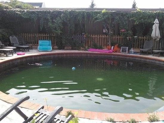 Bourgueil, Frankrijk: La piscine