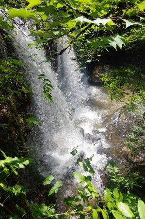 Long Creek, SC: LEVEL 4 BOTTOM OF FALLS