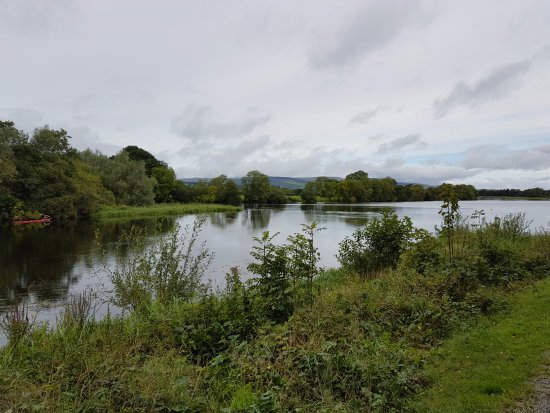 Castleconnell, Irlanda: View along river from outside B&B