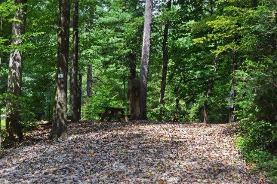 orchard lake campground prices reviews saluda nc tripadvisor