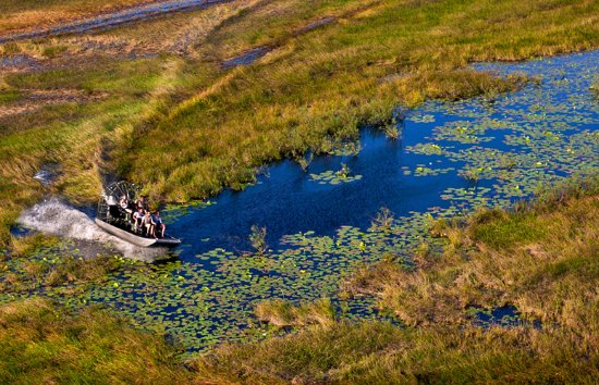 Airboat SwampTour Adventures of New Orleans