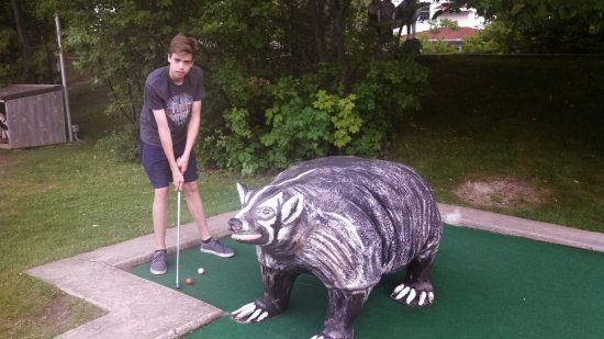 Red Putter Mini Golf: The badger hazard
