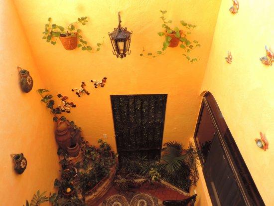 Hotel Hacienda del Caribe: Nuestro jardin