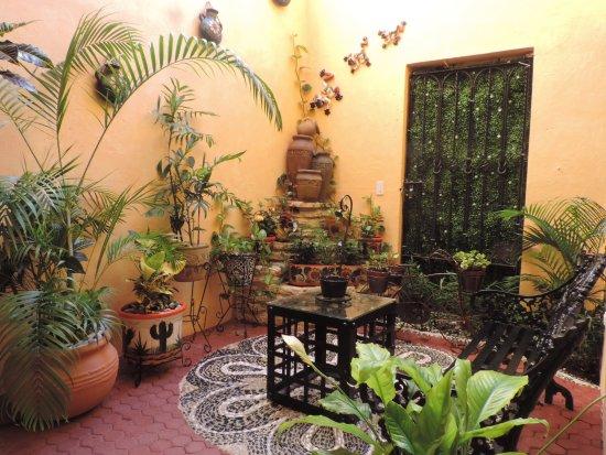 Hotel Hacienda del Caribe: Jardin