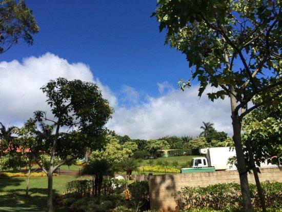 Wahiawa, Havai: photo1.jpg