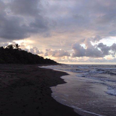 Tortuguero, Kosta Rika: photo1.jpg