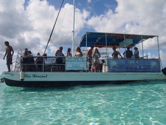 George Town, Grand Cayman: Blue Horizon