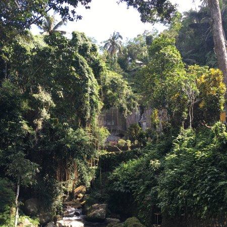 Tegalalang, Indonesia: Gunung Kawi Sebatu Temple
