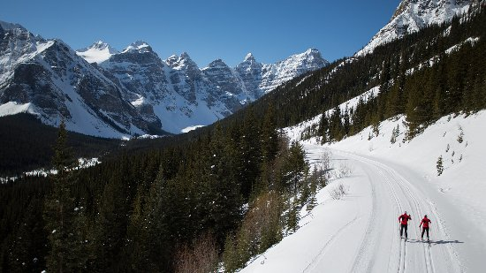 Banff National Park, Canada: Cross country skiing Moraine Lake Road