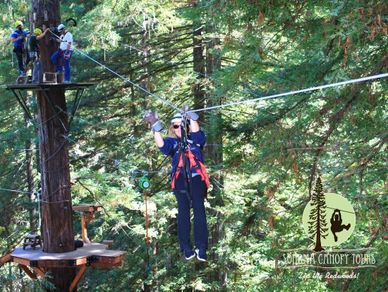 Sonoma Canopy Tours: photo0.jpg
