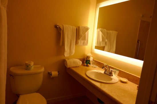 Napa Winery Inn: Best bathroom feature is make-up mirro