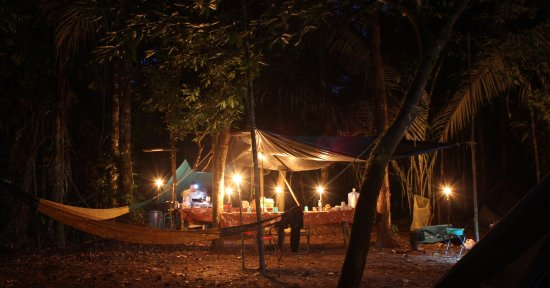 Tambopata National Reserve, بيرو: Jungle camping