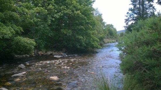 Glendalough Monastic Settlement : Stream at Glendalough