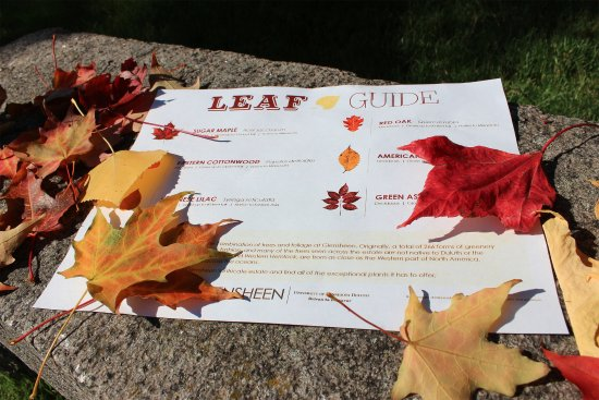 Glensheen, The Historic Congdon Estate: Get your leaf guide to explore the 12-acre estate before or after your tour!