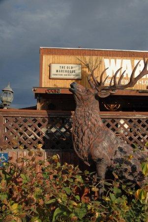 Zillah, WA: Elk..bugling?
