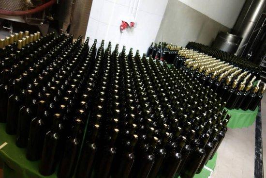 Samobor, Croazia: Wine production before labeling