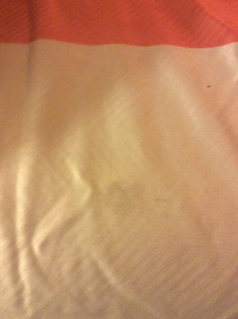 Pinole, CA: One of the many stains on the pillows