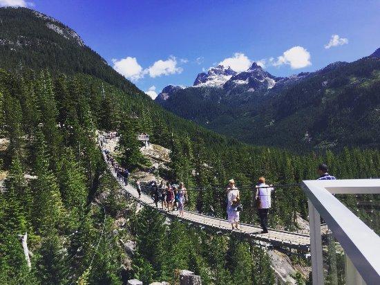 Squamish, Canadá: Suspension Bridge at the top of Sea to Sky Gondola